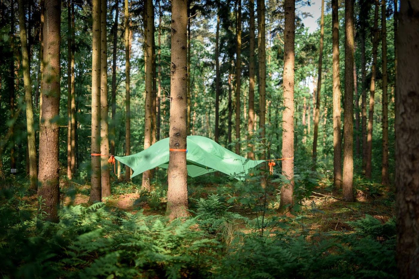 Übernachten Sie in einem Baumzelt