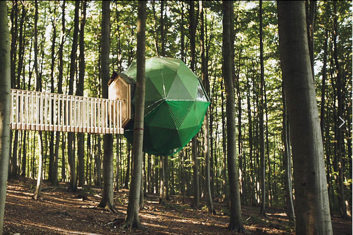 Baumhaushotel Robins Nest